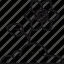 bloom, equipment, flower, garden, gardening, patch, soil