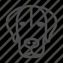 dog, pet, animal, cute, head, ears
