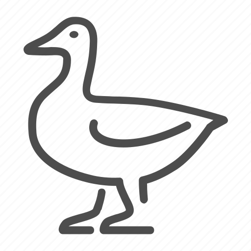 Duck, bird, poultry, fowl, beak, animal icon - Download on Iconfinder