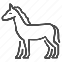 horse, stallion, animal, mustang, wild, footed, cloven