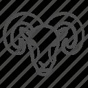 ram, sheep, animal, wild, horn, head