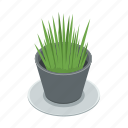 grass, houseplant, plant, pot icon