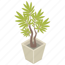houseplant, plant, pot, tree icon