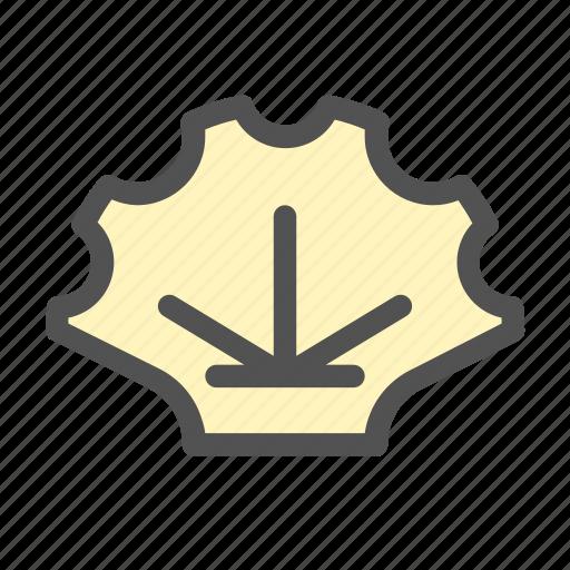 Creatures, ocean, scallpos, sea, shell icon - Download on Iconfinder