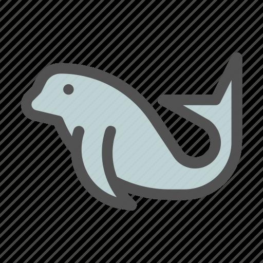 Lion, ocean, sea, seals, walrus icon - Download on Iconfinder