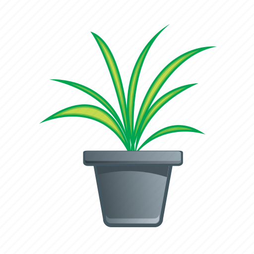 floral, flower, green, leaf, plant icon