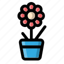 flower, flowerpot, plant, pot, vase icon