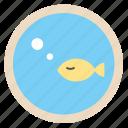 aquarium, business, fish, office, work
