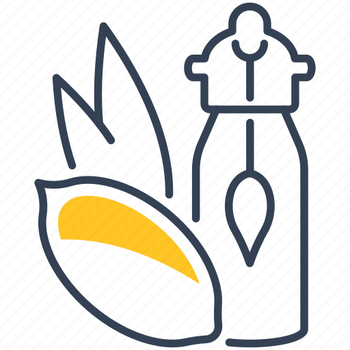 food, oil, pecan icon