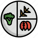 balanced, diet, nutrition, healthy, pyramid