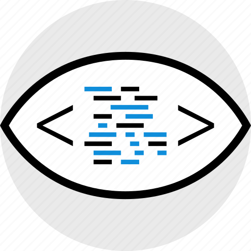 code, development, eye, web icon