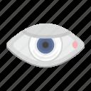 eye, eyesight, man, pupil