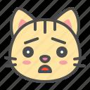 cat, cute, face, kitten, pet, sad