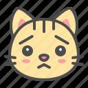 pet, cute, face, worried, cat, kitten