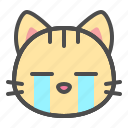 pet, cry, cute, face, cat, kitten icon