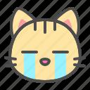 cat, cry, cute, face, kitten, pet