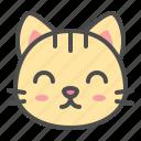 cat, cute, face, kitten, pet, smile