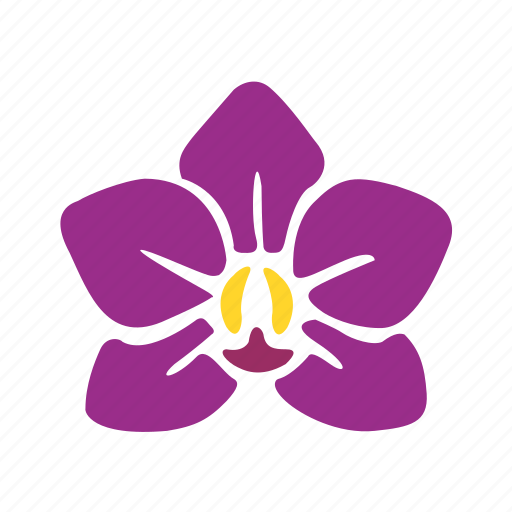 flower, nature, one, orchid, purple, violet icon
