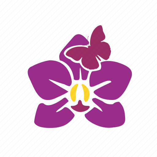 animal, beauty, butterfly, flower, nature, orchid, spa icon