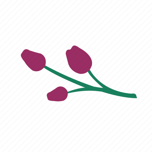 branch, buds, green, nature, orchid, pink, purple icon