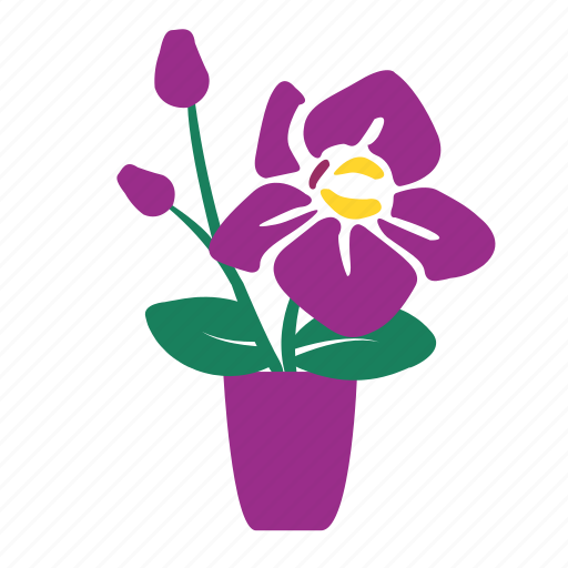 flower pots, in, orchid, three, three orchid, vase, window icon