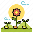 agriculture, growth, plant, plant propagation, propagation, seedling, sprout icon