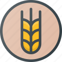 diet, grain, wheat icon
