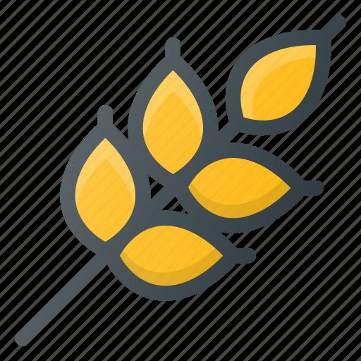 diet, grain, rise, wheat icon