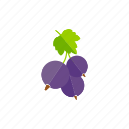 berries, currant, food, fresh, fruits, healthy, organic icon