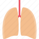 clinic, doctor, hospital, lungs, treatment icon