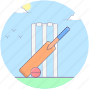 baseball, bat ball, cricket, cricket equipment, sports equipment icon