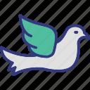 bird, dove, ornithology, pigeon icon