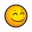 emoticon, pleased, smile icon