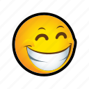 emoticon, smile, troll icon