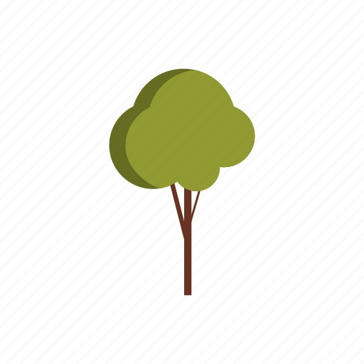 environment, forest, natural, nature, plant, summer, tree icon