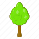 forest, nature, park, tree icon