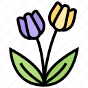 bloom, flora, flower, plants, tulips icon
