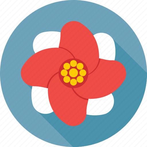 Beauty, blossom, floral, flower, nature icon - Download on Iconfinder