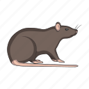 animal, mouse, pest, rat, rodent icon