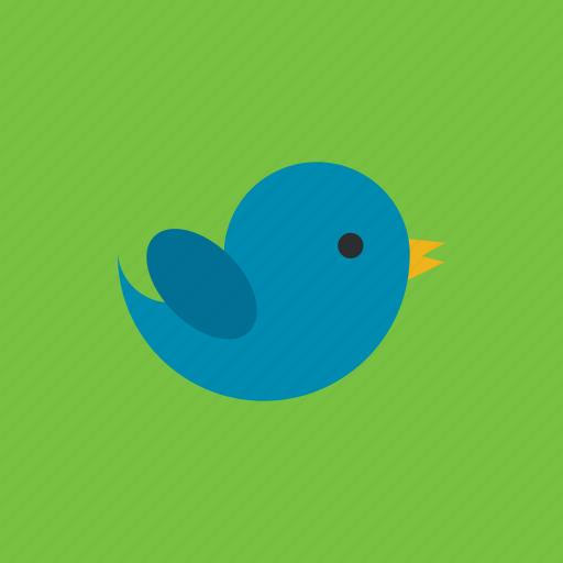 animal, bird, pet, tweet icon