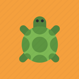 amphibian, animal, pet, turtle icon