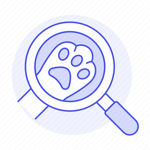 1, animal, care, cat, dog, kitty, magnifier, paw, pet, puppy, vet, visit icon