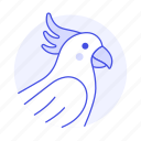 animal, birds, cockatoo, crested, parrot, pet, sulphur, white icon