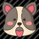 animal, dog, expression, gland icon