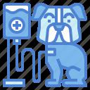 equipment, medical, pets, saline, veterinary