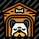 dog, house, pets, sleep