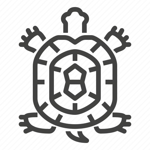 Pet, reptile, shop, turtle icon - Download on Iconfinder