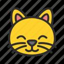 animal, cat, pet, shop