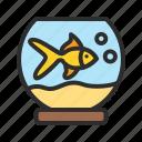 aquarium, fish, pet, shop