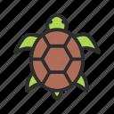 pet, shop, turtle icon